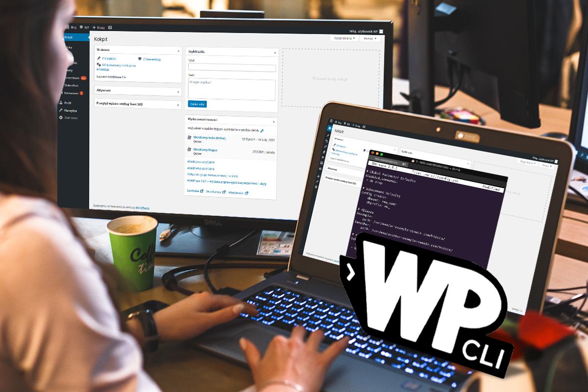 WP-CLI-na-hostingu-w-nazwa.pl_.png